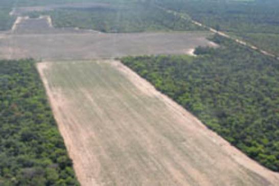 TIERRAS FISCALES: EL GRUPO AGROPERFILES CONVOCO AL INSTITUTO DE COLONIZACION