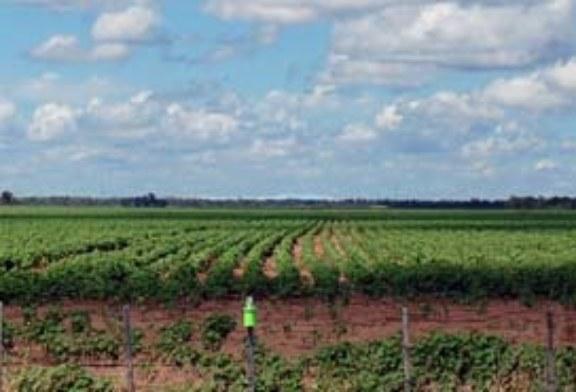 MAS DE 3.500 PERSONAS EN PLENO CENSO NACIONAL AGROPECUARIO