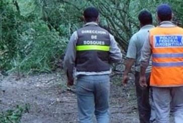 ENTIDADES FORESTALES Y EL GOBIERNO DEL CHACO CON UATRE POR LOS CONVENIOS DE CORRESPONSABILIDAD GREMIAL