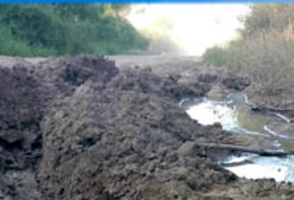 Caminos rurales: ODISEA EN EL IMPENETRABLE