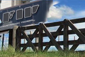 AFIP PODRIA SUSPENDER EJECUCIONES FISCALES EN CHACO