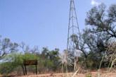 PRODUCTORES VIERON LANGOSTAS EN LA ZONA DE LAS PIRAMIDES