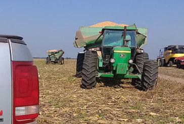 UNA AGRICULTURA PREVISIBLE, PROPONE EL GRUPO AGROPERFILES