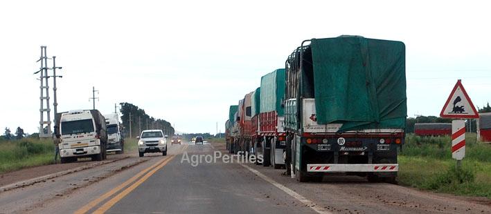 CAMIONES DE MAS DE 3.500 KILOS NO PODRAN CIRCULAR HOY POR RUTAS 11 y 16 EN CHACO