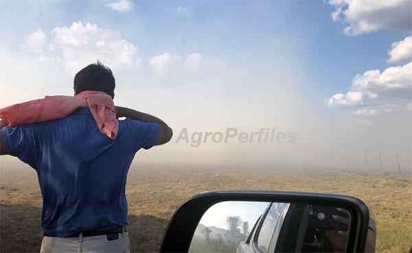 CUANDO EL FUEGO AMENAZA – Chacareros, con ayuda de vecinos y Bomberos, evitaron que se queme un lote de maiz