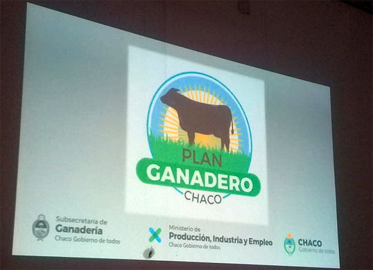 PLAN GANADERO 2020-2030: MESA GANADERA ANALIZO EL PROYECTO EN SAENZ PEÑA