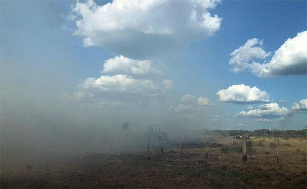 HASTA LAS CAÑADAS SE SECARON – A la falta de lluvias, los incendios agregan otro drama en Las Garcitas