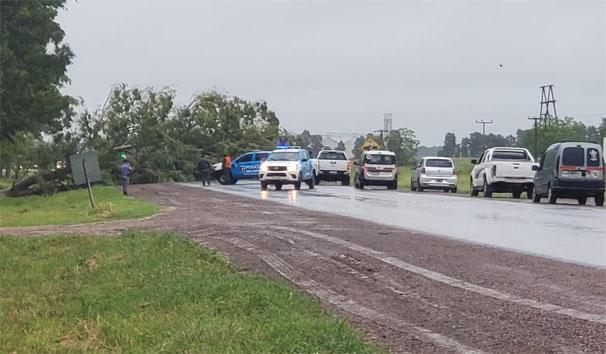 PROTESTA CHACARERA EN RUTA 95 EN DU GRATY – Piden obras de parte de APA y del municipio local